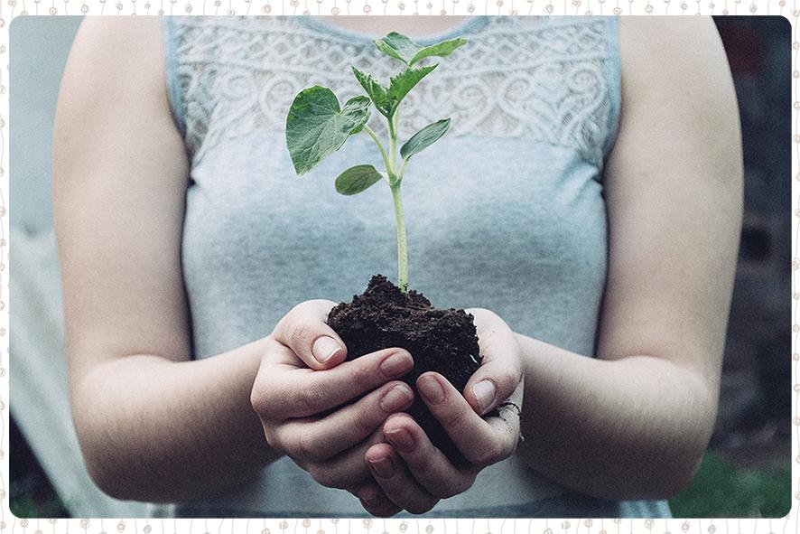 Photo représentant une femme tenant une jeune pousse de plante. Être belle au naturel, c'est aussi être en cohérence avec ses valeurs et prendre soin de la planète.